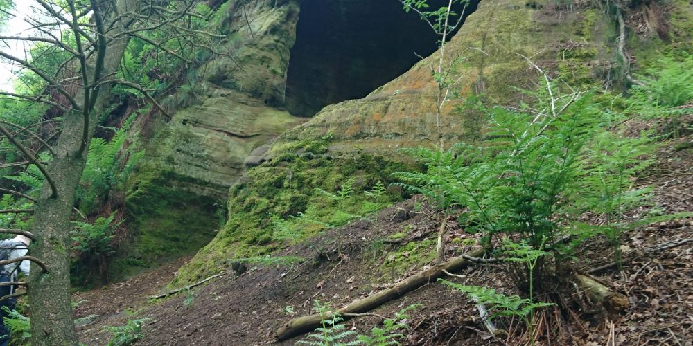 'Caving' and Biology in the Cheshire Sandstone Ridge